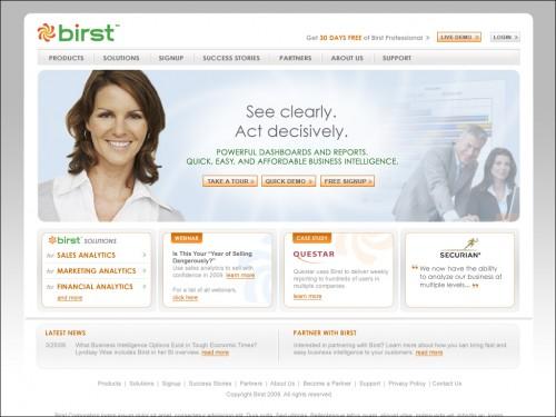 Birst.com Website